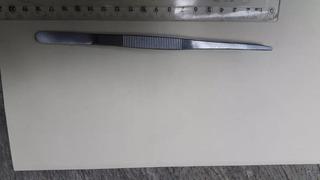 Pinza Entomológica 18cm Punta Recta , Plana Y Dentada