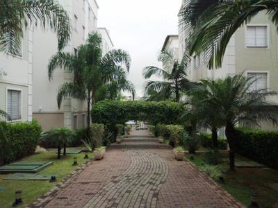 Lindo Apartamento Pavimento Térreo No Butantã. Paulo 81810