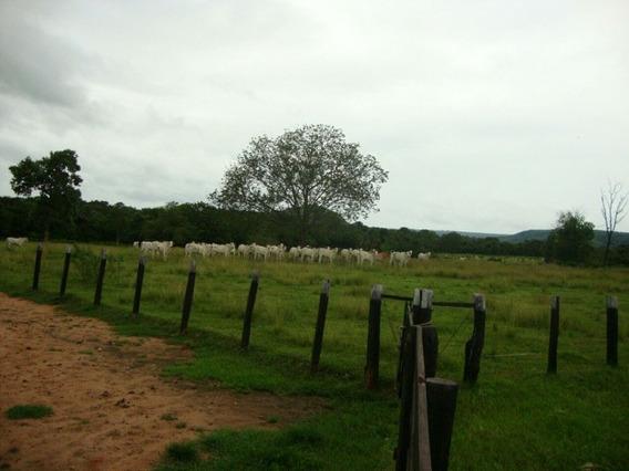 Fazenda A Venda Em Coxim - Ms (agricultura E Pecuária) - 801