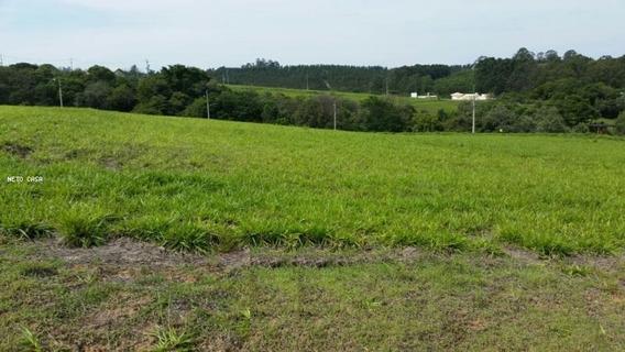 Terreno Em Condomínio Para Venda Em Sorocaba, Condomínio Fazenda Alta Vista - Tb018
