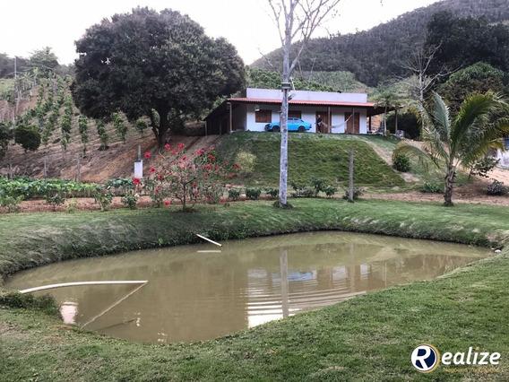 Sítio Com Produção De Pimenta Do Reino A Venda Em Guarapari || Realize Negócios Imobiliários || A Imobiliária Da Família Em Guarapari - Ch00003 - 33342050
