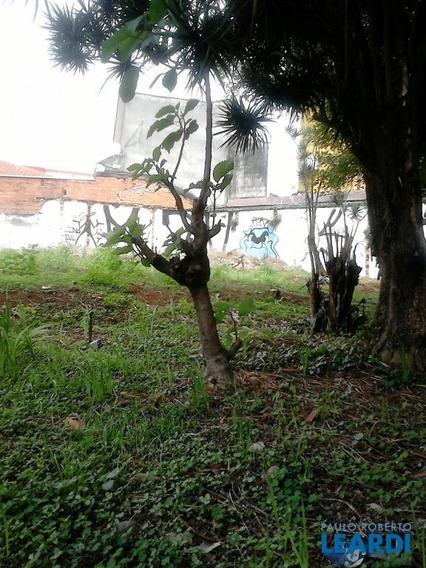 Area - Alto Da Lapa - Sp - 519883
