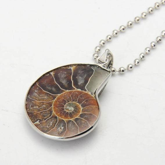 Colar Pingente Amonita Fossíl Natural Genuino Concha Amuleto
