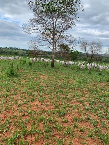 Fazenda Com 4 Dormitórios À Venda, 8820000 M² Por R$ 9.000.000,00 - Centro - Guiratinga/mt - Fa0184