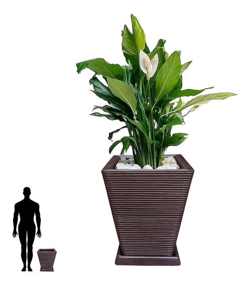 1 Vaso + Prato D Fibra Resina Plastica Polietileno Q 45x35