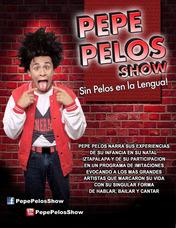 Comediante E Imitador Pepe Pelos Show De Comediante