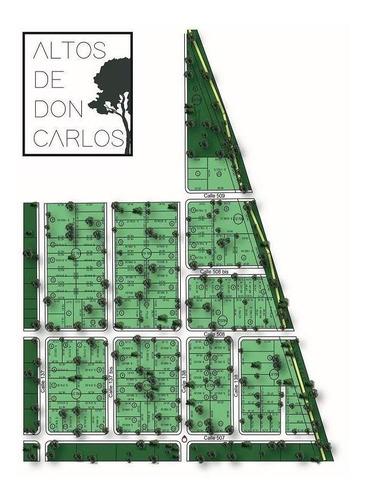 Imagen 1 de 4 de Lote En Venta. Don Carlos 1