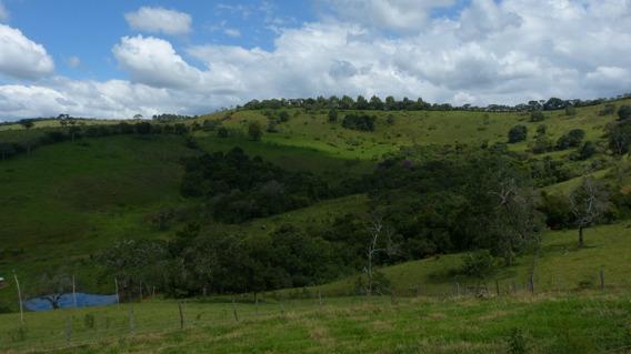 Fazenda Com 325 Ha No Sul De Minas , Cidade De Aiuruoca - 459