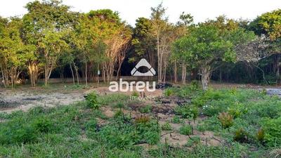 Area - Pium - Ref: 5745 - V-817809