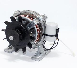 Motor Para Tanquinho Premium 3.0 Kg 127v - Original