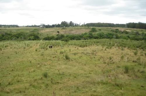 Campo Ganadero En Solis Chico.