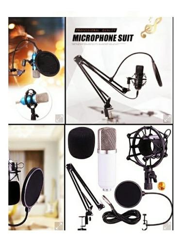 Set Combo Platinum Microfono Con Su Condensador Y Accesorios