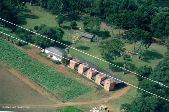 Chácara Para Venda Em Ipiranga, Distrito Descalvado, 2 Dormitórios, 1 Banheiro, 2 Vagas - 52_2-116057