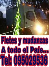 Fletes Y Mudanzas.