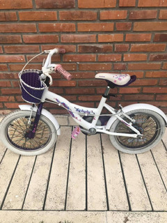 Bicicleta Niña Rodado 14 Raleigh Lil Honey