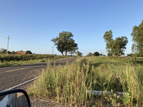 Campo De 12 Hás Ruta 40