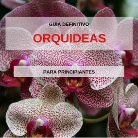 Guía Definitivo - Orquideas Para Principiantes