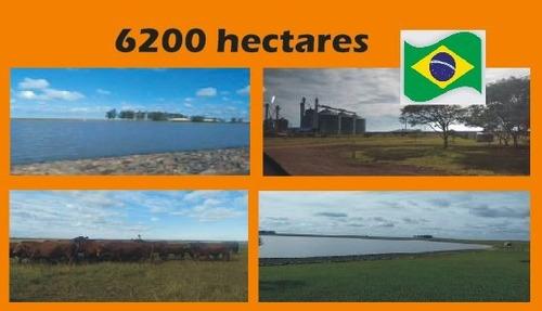 Imagem 1 de 1 de Fazenda Com 6200 Hectares Na Fronteira Oeste Do Rs