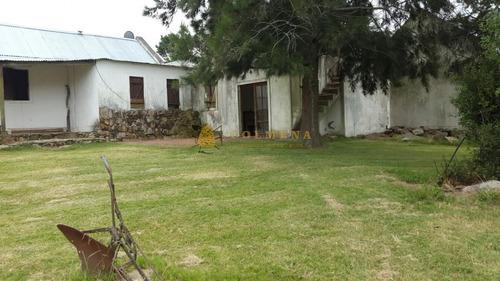 Campo En Abra De Perdomo A Pocos Km De Punta Ballena - Consulte!!!!!-ref:3176