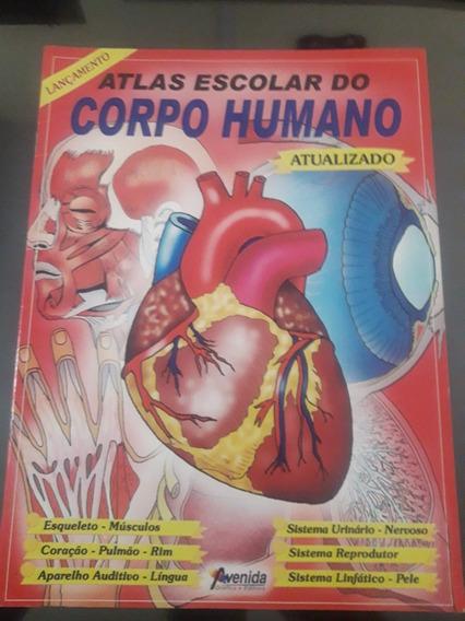 Atlas Escolar Do Corpo Humano - Avenida Gráfica E Editora