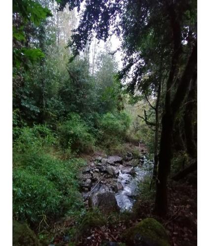 Imagen 1 de 10 de Tres Parcelas Con Estero , Frente Al Prístino Río Liucura, C