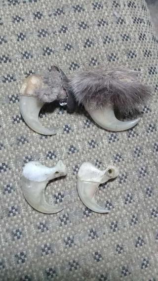 Garras De Animales Excelentes Para Amuletos.
