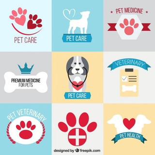 Guía De Cuidado De Animales