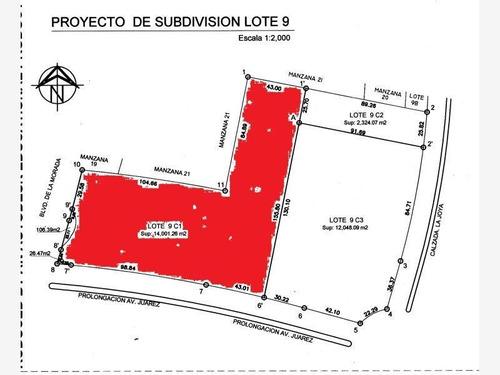 Imagen 1 de 1 de Terreno Comercial En Venta Fracc La Joya