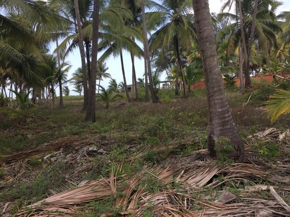 Se Venden 2 Terrenos En La Playa Pico De Oro