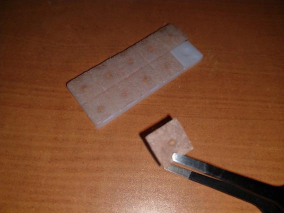 Semillas De Mostaza 100 Pzs Auriculoterapia Acupuntura