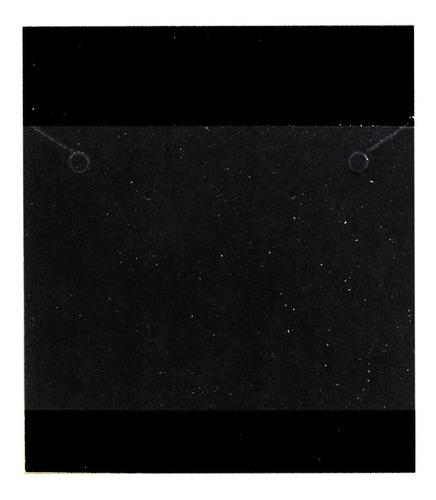 1000 Cartelas De Papel Preta Para Brincos G - 9 X 10 Cm