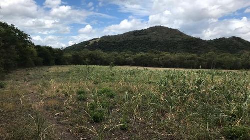 Imagen 1 de 11 de 60 Mzs Santa Ana - Jinotega