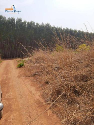 Imagem 1 de 5 de Terreno À Venda, 3820 M² Por R$ 60.000 - Zona Rural (joanápolis) - Anápolis/go - Te0638