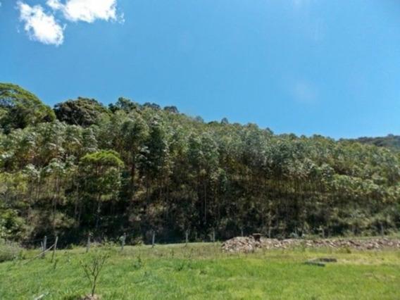 Acrc Imóveis - Sitio À Venda No Bairro Encano Alto - St00011 - 3500573