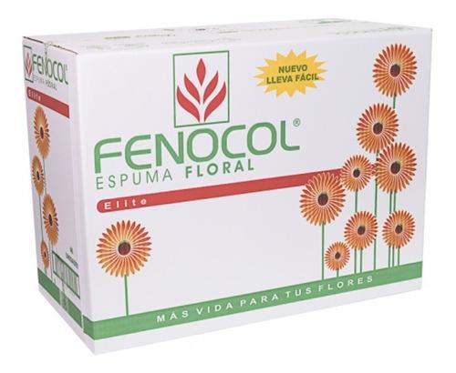 Imagen 1 de 4 de Espuma Floral Fenocol Elite X 48 - Unidad a $1420