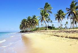 Terreno En Bavaro Punta Cana Con 4 Kilometros De Playa