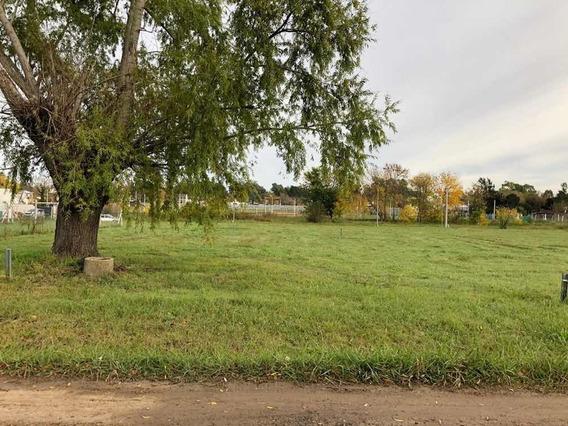 Terreno En Gorina 10x34,5