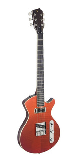Guitarra Eléctrica Silveray Deluxe Stagg Svycstdlxfred