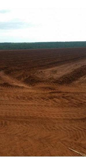 Fazenda Para Venda Em Nova Andradina, Zona Rural - 1054
