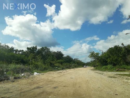 Imagen 1 de 5 de Terrenos En Venta En Region 7 En Tulum