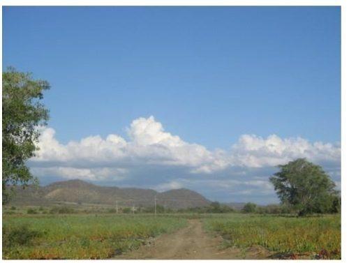 Se Vende Terreno, Sinaloa