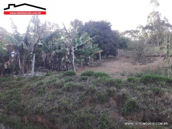 Terreno Em Pinhalzinho - 194