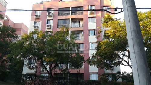 Apartamento - Jardim Carvalho - Ref: 204592 - V-204704