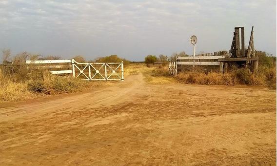 Vdo Hermoso Campo 2700 Has Dto.rivadavia Santiago Del Estero