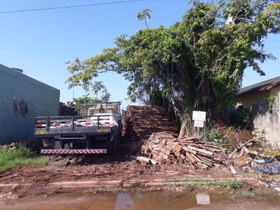 Terreno Em Mongaguá - 1747 - 33514286