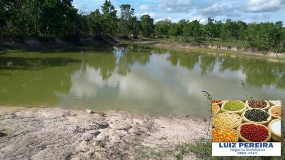Fazenda A Venda De 76 Alqueirões Em Formoso Do Araguaia-to - 1247