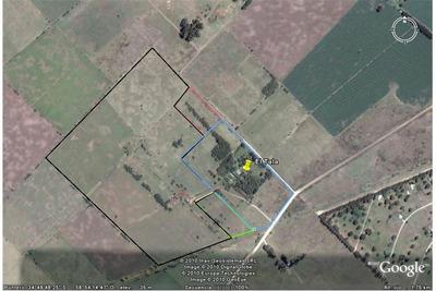 Lote Campo De 15 Hectareas - Proximo A Ruta 6