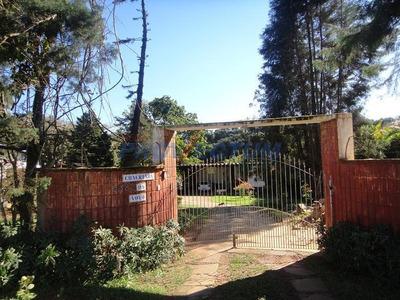 Chácara À Venda Em Jardim Marabá - Ch266978