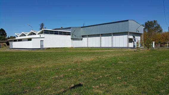 Planta Industrial Melilla Alquiler Ruta 5 Y Camino De La Redencion, Con Cámara Frigorifica!