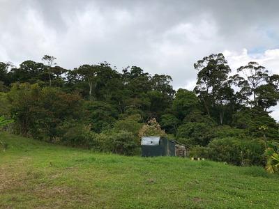 Se Venden Fincas En La Zona De Tucurrique, Jiménez, Cartago